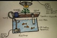 Aquaponics Resources / Venture down the path of a personal system.