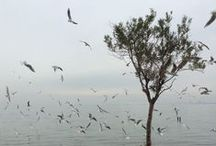 My Places / Moments in my City Thessaloniki