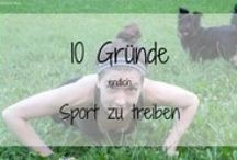 fitness / alles rund um sport und fitness - tipps, workouts, erfahrungen
