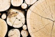 Wood / Hout
