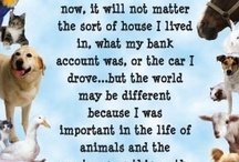 """For the love of Animals/creatures / I love God's animals and creatures. Bugs fascinate me and marine life is truly amazing! (don't like roaches though) / by Alice """"Gladys"""" Hayes"""
