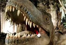 Dino Fun / by Royal Tyrrell Museum