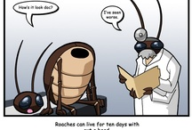 The Funnies / by Southern Pest Control