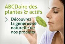 L'herbier MESSEGUE / Abcédaire des plantes & actifs naturels by MESSEGUE.