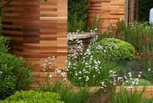 Exterior Plantings I Peterssen/Keller Architecture