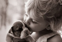 MUST love DOGS  / by Mj Miller