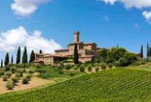 Wineries - Italy / You find some of the oldest wine-producing regions in the world in Italy, and the wines are known worldwide for their broad variety.