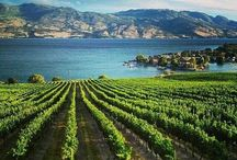 Wineries - Canada / Wine in Canada is mainly produced in the southern parts like the Okanagan Valley in British Columbia and the Niagara Peninsula in Ontario.