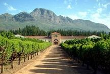 Wineries - South Africa / Wine production in South Africa has a history dating back to 1659. Most wine regions are located near the coastal influences of the Atlantic and Indian Oceans.