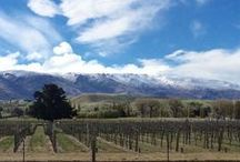 Wineries - New Zealand / New Zealand's history of wine making and vine growing goes back to colonial times. Some wine critics consider it home to the world's best Sauvignon Blanc.