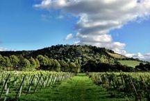 Wineries - United Kingdom