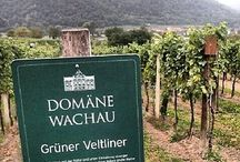 Wineries - Austria / Austria is a producer of predominantly white wines (Grüner Veltlinger!) but produces also some fine red wines from a.o. Pinot Noir and Zweigelt grapes.