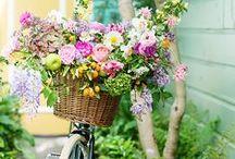 { Simply Flowers } / I can't resist a flower pin in any shape or form.  www.theflowerfarm.co.uk https://www.facebook.com/theflowerfarmflorist/