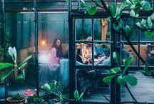 Garten / Garden / Ideen und Inspiration für den Garten  Inspiration and ideas for the garden and gardening