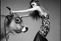 """EDITORIAL: ANIMALS / """"Animals don't hate, and we're supposed to be better than them."""" -Elvis Presley / by Nancy Sohl"""