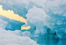 Ice / by Sandra Custer