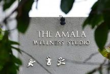 Wellness Retreat with Amala / Ready to make some changes in your lifestyle? Our wellness programs help you start. Get more active, reduce your stress or get help with managing a chronic condition. You choose the wellness program that's most important to you.  Wash away the last traces of every day life with The Amala
