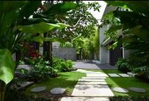 Landscape and garden design / Step into our resort and find a little tropical paradise