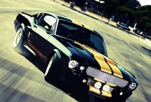 Must have Mustang / Car
