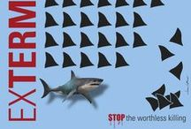"LCS-ExTermination STOP the worthless killing! / I'm a WWF member from 1990 and since few years I'm member of Millennium. I follow and support different companies for animal's safeguard. I thought up this concept in a graphic way: the texture, made of tiger's claws, elephant's fangs, rhino's horns or shark's fins, crumbles in order to draw the attention to the worthless massacre that those animal species suffer.  The title ""ExTermination"", represented by different sizes of the same font, recall a wordplay that exhort to stop the destruction."