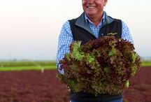 #GrowWithCalO / Learn about our farmers, our fields and more as we share info and tips this Spring! #GrowWithCalO