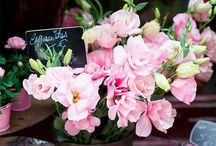 Flowers / Beauty of flowers and flower markets