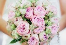 Wedding Flowers / Bouquets and Flower Arrangements we love