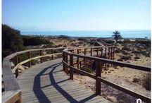 Beaches in Spain / Beaches from all around the Spanish coast. #CostaBlanca #CostaCálida