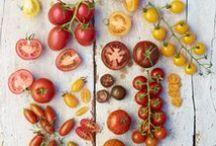 Tomaten / Tomaten, tomatenplanten, moestuinieren