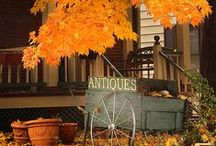 Autumn / Celebrating autumn decor, Halloween fun and Thanksgiving delights