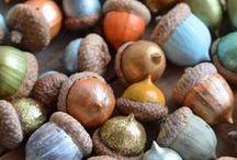 Creatief met noten / Herfsttijd is echt de notentijd. Noten zijn niet alleen heerlijk om te eten, maar je kunt ze ook gebruiken om te knutselen. Doe hier inspiratie op voor de leukste herfstversiering voor in je huis.