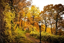 """Discover Fort Tryon Park, """"Upstate Manhattan"""" / Fort Tryon Park spans more than 67 acres of land in Inwood in northern Manhattan and features spectacular views of the Hudson River. Designed by the Olmsted Brothers in the 1930s, the park contains eight miles of pedestrian paths, promenades, terraces and gardens, including the breathtaking Heather Garden."""