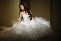 Mia Solano Bridal 2010 / Our 2010 Bridal Collection is here!