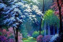 COSE DA VEDERE E SAPERE / Cose  che si possono fare da se e risparmiare  ed abbellire il proprio giardino, balcone..........la nostra casa.