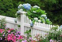 Home Décor - Garden & Outdoor