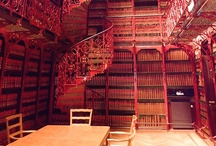 books, libraries, writers 443 / by Patricia Rinaldi