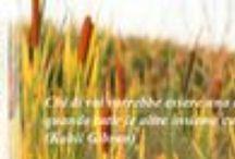 Le Donne che si mobilitano in ambito lavorativo per creare delle reti concrete. / Molte donne si sono rese conto della necessità di imparare a gestire la travolgente evoluzione della società. Una evoluzione che sta mettendo in dubbio anche i legami che fino a poco tempo fa si ritenevano scontati e invulnerabili, quelli familiari. L'ambito lavorativo diventa strategico per intessere la rete di relazioni che permette il confronto e la formazione, determinanti per poter gestire al meglio il cambiamento e non rimanerne vittime.