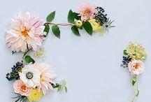 Bruiloftbloemen // Wedding Flowers / Van bloemen heb je nooit genoeg! In dit board inspiratie om jouw bruiloft met wedding flowers om te toveren tot een perfecte dag.