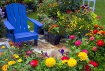 Garden & Patio / Beautiful gardens and patios we love.  Decorating ideas. / by MoonDreams Music Recording Group, LLC