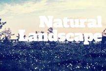 Natural Landscapes / There is nothing more breathtaking than natural landscapes. Here is our curated collection of the beautiful outdoors. Enjoy!