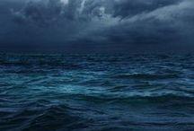 •See the Sea•