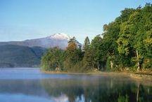 Loch Lomond & Trossachs / Loch Lomond & the Trossachs is een van de populairste vakantiebestemmingen in Schotland, en niet voor niets. Voor liefhebbers van mooie natuur is deze streek een must! Klik door op de foto's en je komt terecht op het DFDS blog, waar we je nog veel meer vertellen over deze mooie regio.