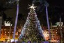 The Twelve Days of Boca / 12 Days of Boca: can't miss things to do this holiday season at Boca Resort! / by Boca Raton Resort & Club, A Waldorf Astoria Resort