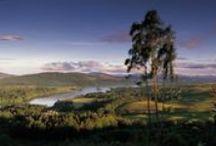 Zuid-Schotland / Onbekend maakt onbemind. Zonde, want Zuid-Schotland is schitterend en heeft heel veel te bieden. Een ruige kust, prachtige nationale parken... Klik door op de foto's en je komt terecht op het DFDS blog, waar we je nog veel meer vertellen over deze regio.
