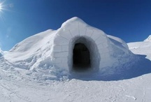 White Winter Scenery