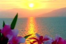 **** ✿ Beautiful SUNRICE & SUNSET ✿ ****