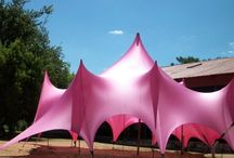 Tent: Pink Inspiration / Pinks, blush, coral, salmon are all very feminine and soft. Some of the events on this board used bold pinks with other coordinating colors like orange an purple that are great examples of how to use bold color.