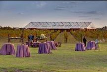 Tent: ClearSpan Tent Style / Clear Span tents are any large structure over 50' in width and do not have any center poles.