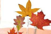 All for Fall / Autumn is a second spring when every leaf is a flower. - 