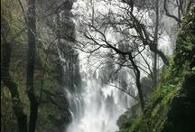 Turismo en Silleda / Bienvenido al Ayuntamiento de Silleda. Aquí podrás vivir y disfrutar no sólo de la increíble naturaleza (cascadas, bosques, lagos, rutas de senderismo..), sino de la increíble gastronomía del interior de Galicia y de su cultura (Iglesias románicas, monasterios, castros, fiestas populares ...).  En Silleda se encuentra el Recinto Ferial Internacional de Galicia, uno de los más importantes de España y de Europa..  En Silleda te daremos la mejor bienvenida!!